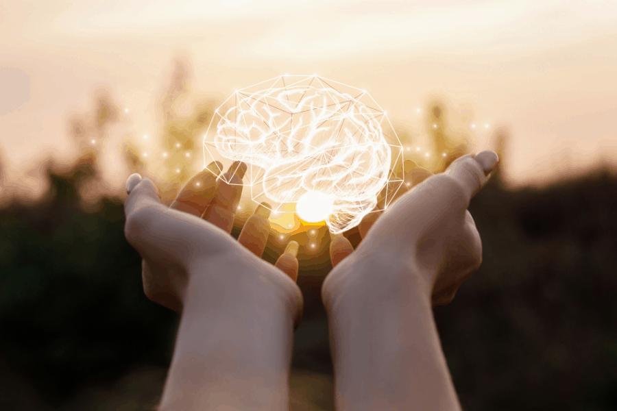 Hjärnan i dina händer